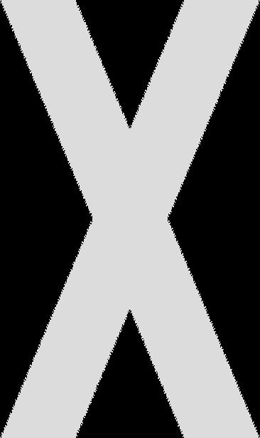 Lanxess X