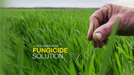 Xpro Fungicide